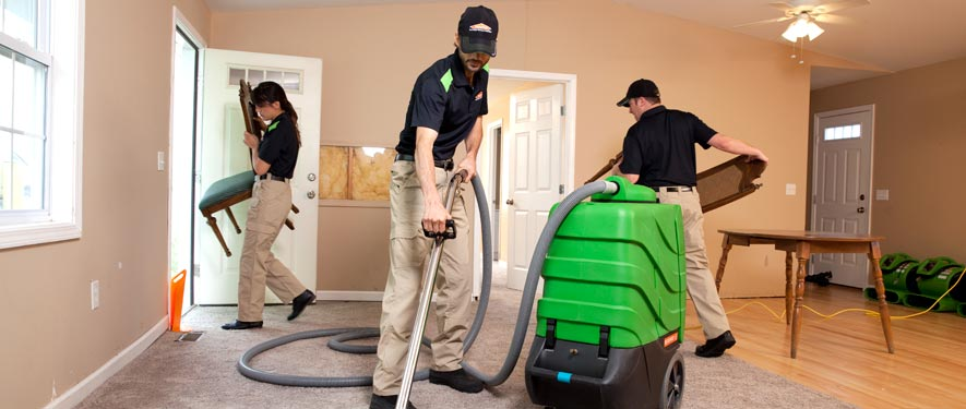 Mattapan, MA cleaning services